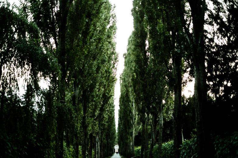 Assistens Kirkegård, Copenhagen