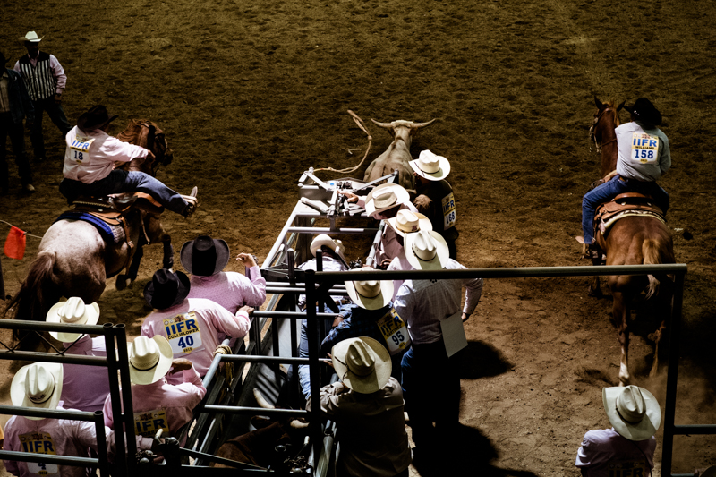 charlenewinfred-newmexico-iifr-rodeo-roping-1