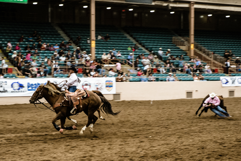 charlenewinfred-newmexico-iifr-rodeo-roping-5