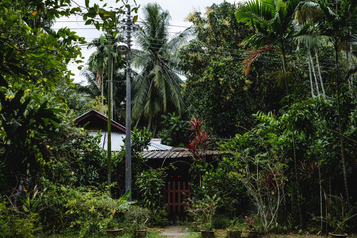 I spent the first 5 years of my life in a village much like this one: Kampong Buangkok, the last remaining kampung in Singapore.