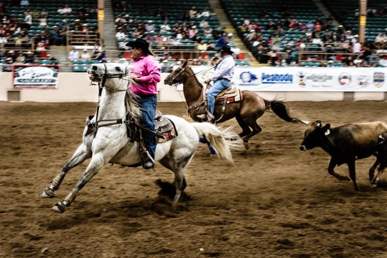Albuquerque, New Mexico. USA 2012