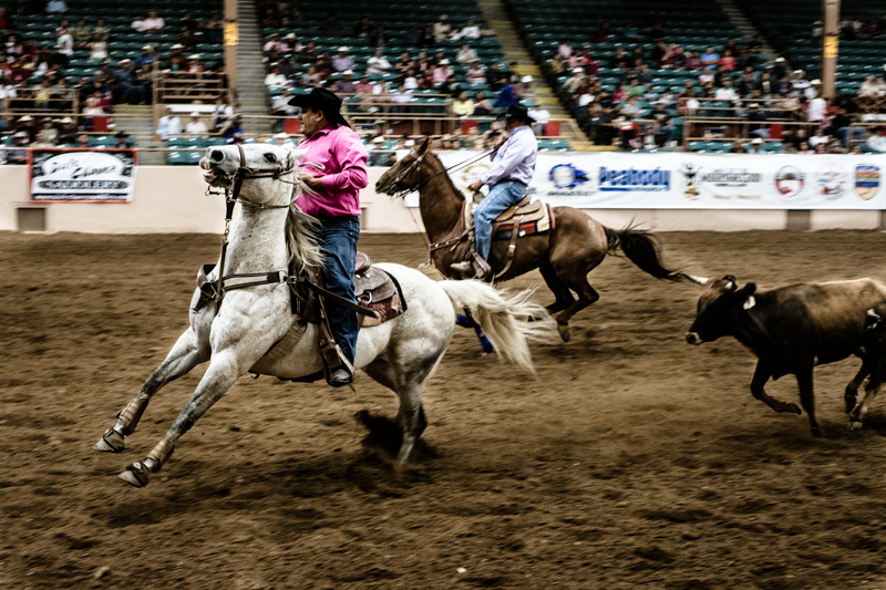 charlenewinfred-newmexico-iifr-rodeo-roping-3