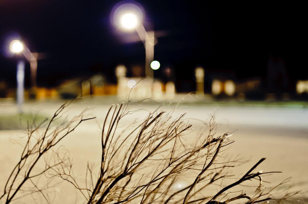 CharleneWinfred-Nightwalking-6690